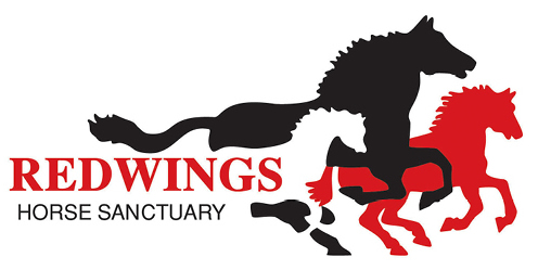 redwings_logo