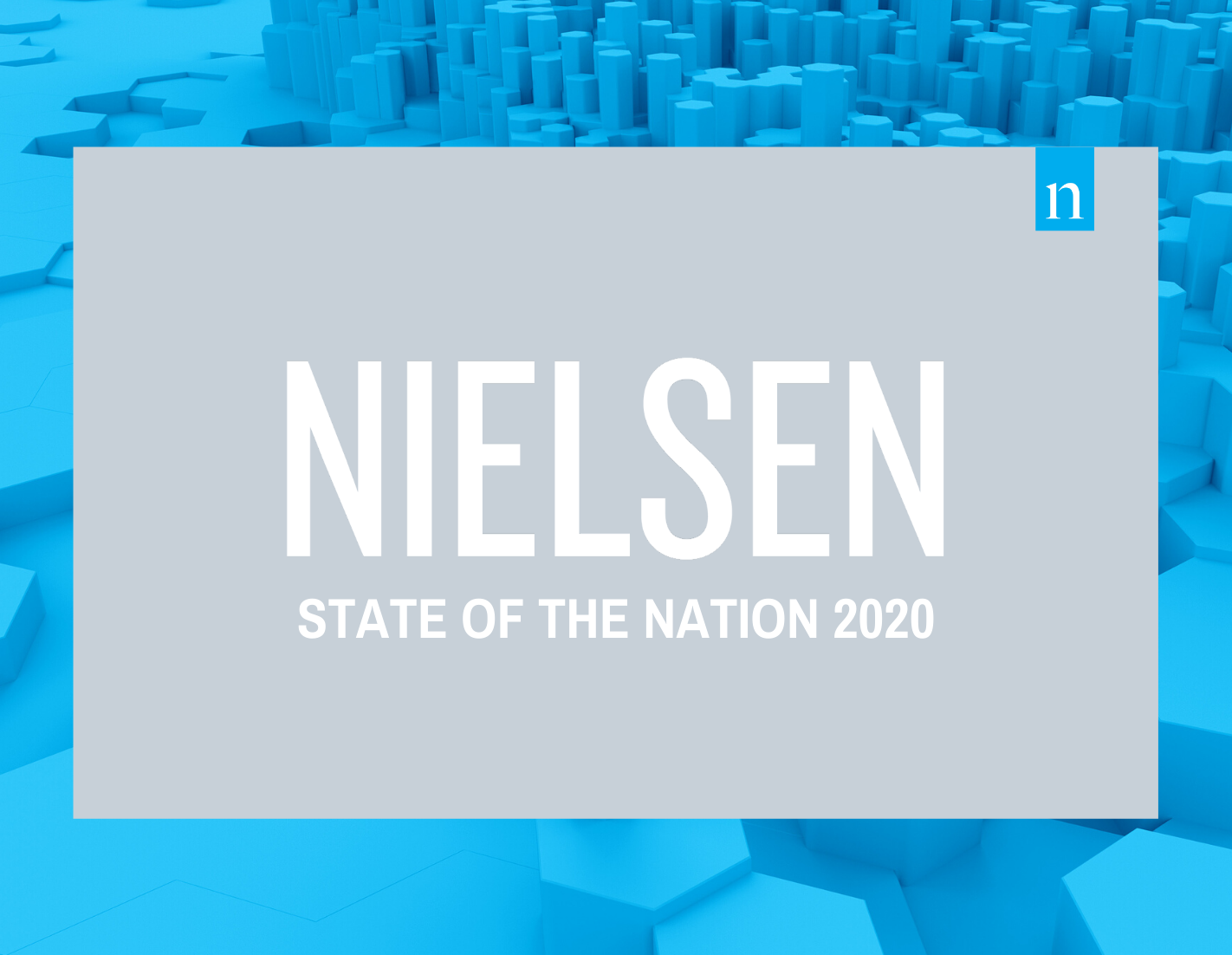 State of the nation 2020 thumbnail